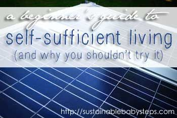 Self Sufficient Definition
