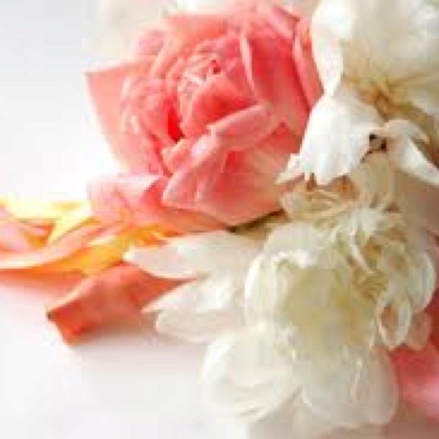Coral Wedding Flowers Wedding Pinterest