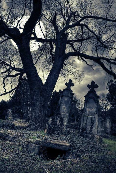 Creepy cemetery | Cemeteries