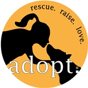 Own a dog rescue