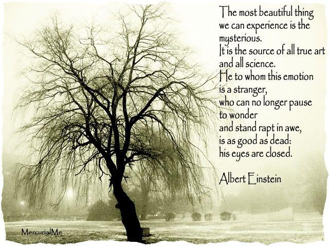 beauty in mystery