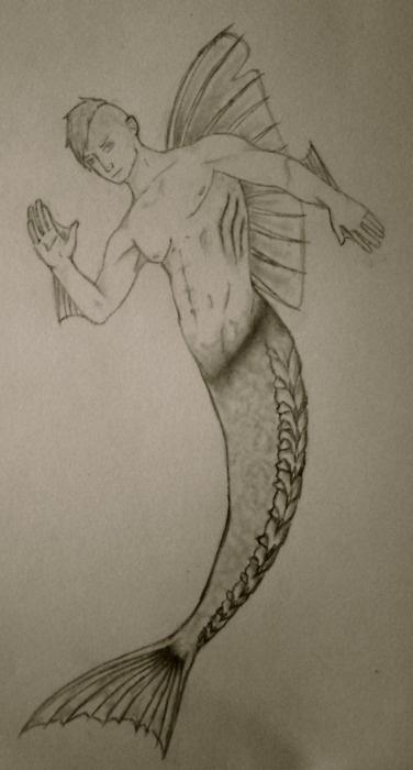 drawing of semi naked mer man merman | mermen merman mer man mermaid ...: pinterest.com/pin/345088390167479880