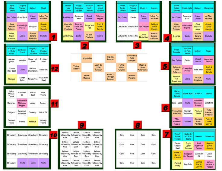 Square foot gardening plans garden pinterest for Square garden designs