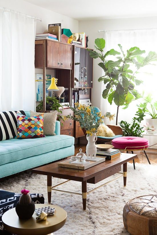 boho chic living space... look, there's my fiddle leaf ficus all grown up!  I love my flf!  who's a pretty plant?  you are!