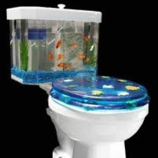 Fish bathroom for the home pinterest for A fish in the bathtub