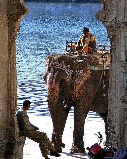 Scene from Lake's Gate, Udaipur, Rajasthan, India.