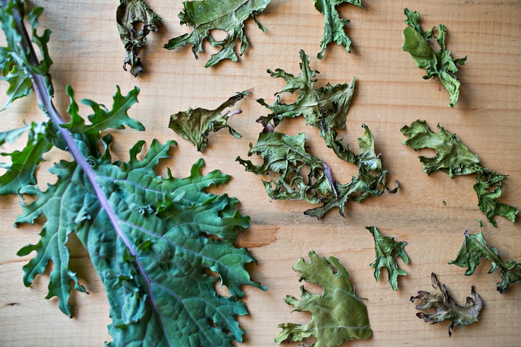 How to make Kale chips. A healthy snack packed full of nutrients.