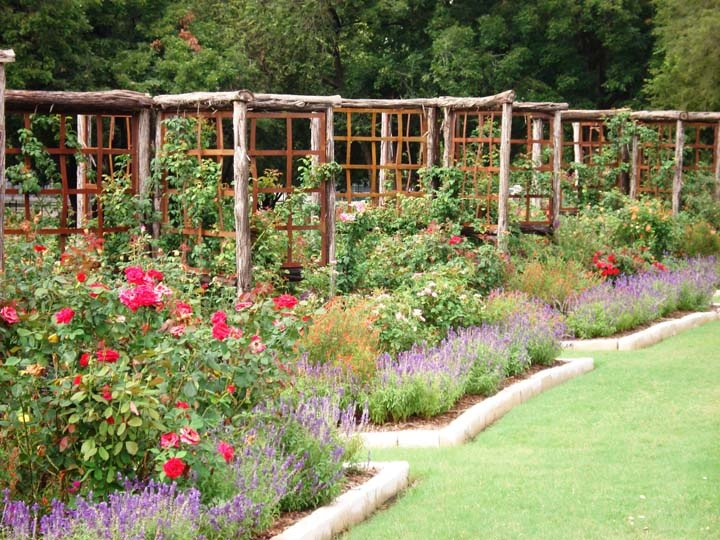 The rose gardens of farmers branch tx for Garden design landscaping farmers branch