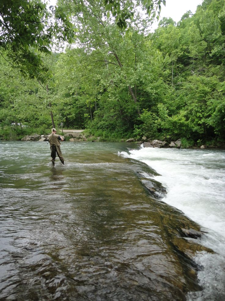 Montauk state park fishing pinterest for Trout fishing in missouri