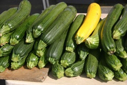 Freezing Zucchini (Sliced) This article discusses 3 ways of freezing: Water Blanching, Steam Blanching and No Blanching.
