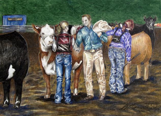 show cattle art by amanda raithel story of my life