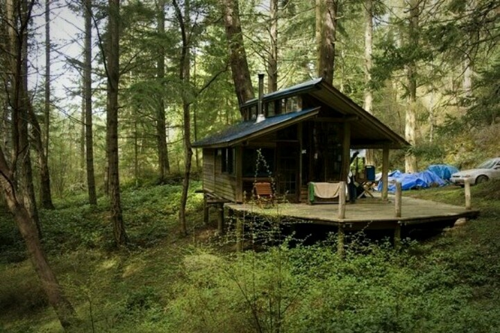Cabin on san juan island wa tiny homes pinterest for Small house builders washington state