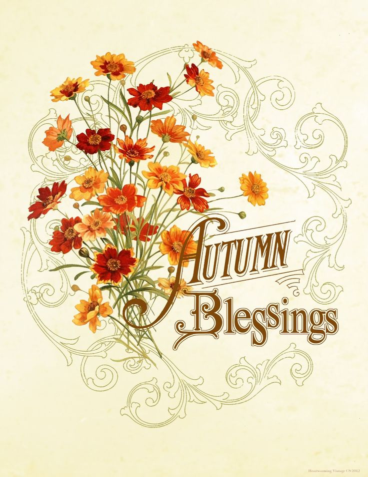 Similiar Blessings Clip Art Keywords