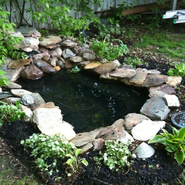 Koi Pond Backyard : Backyard pond  koi ponds  Pinterest