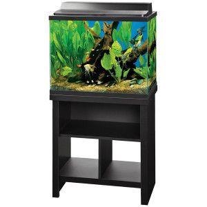 Aqueon 25 Gallon Aquarium and Stand Fish