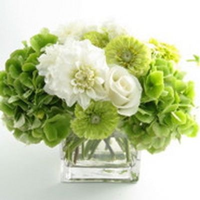Parties, Flowers: Green & White Hydrangeas by camillestyles, via Flickr