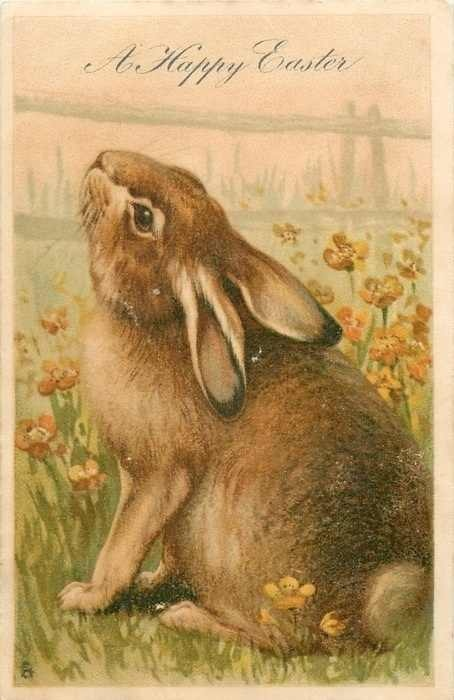 vintage easter bunny - photo #31