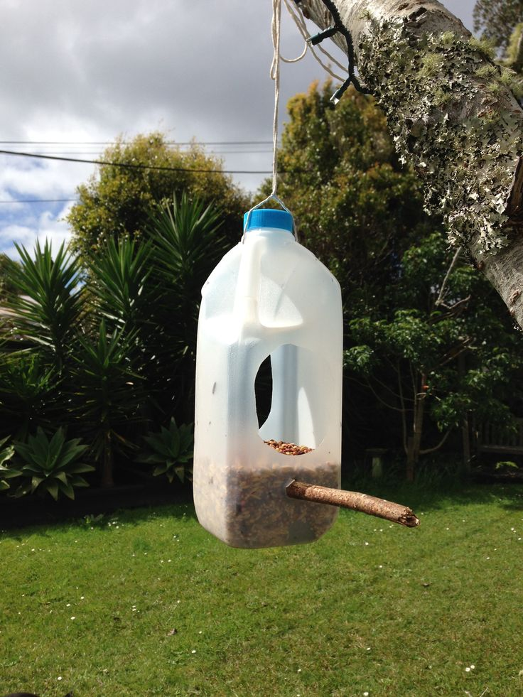 Milk bottle bird feeder birds pinterest for How to make a bottle bird feeder