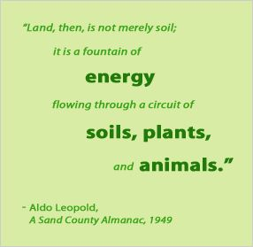 aldo leopold sand county almanac reaction Chapter summary for aldo leopold's a sand county almanac, part 3  he  touches on the way humans use wilderness for recreation and the value in that  use,.