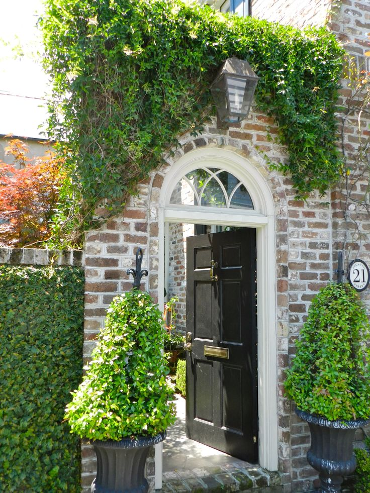 Beautiful entrance with Creeping fig, topiaries, lantern...