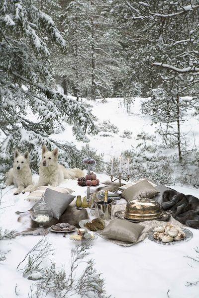 ❥ winter picnic