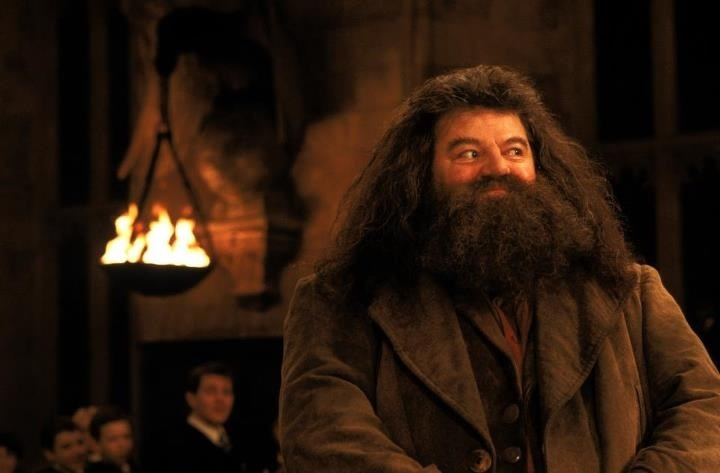 Hagrid | Harry Potter | Pinterest