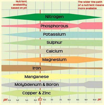 Soil ph and plant nutrients gardening pinterest for Soil nutrients