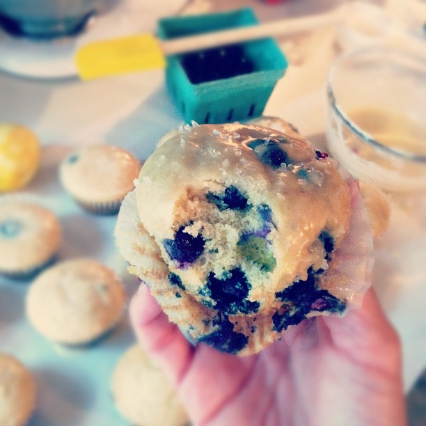blueberry donut muffins | Books Worth Reading | Pinterest