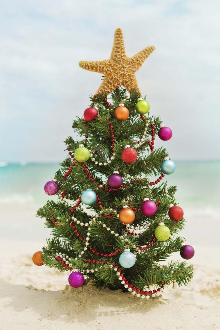 pin by joann moghimi on holliday christmas pinterest
