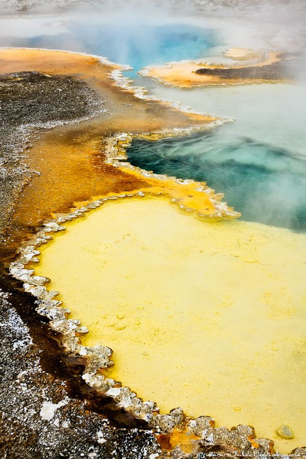 Geothermal areas of Yellowstone, USA