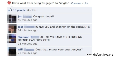 funny single status for valentines day