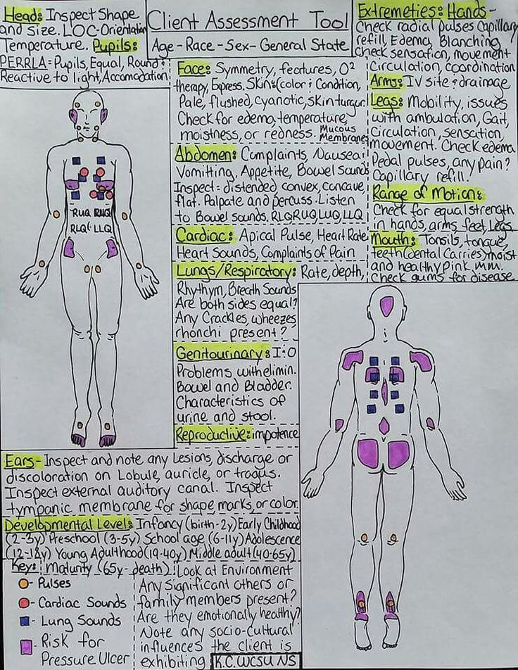 Head To Toe Assessment Cheat Sheet  Nursing School