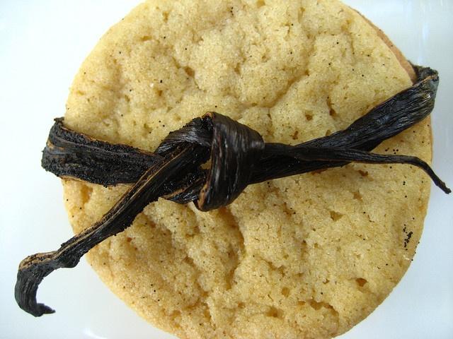 Vanilla Bean Sugar Cookies | Cookies and Bars | Pinterest