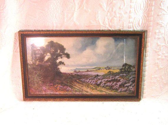 lavender hayward