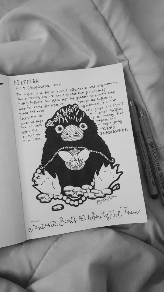 The Niffler From Fantastic Beasts And Where To Find Them