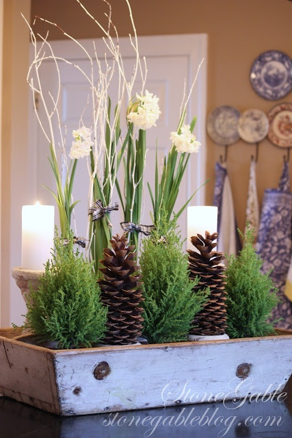 Painted twigs hold the paper whites up. Small cedars and pine cones, candles on chippy holders, all in a wooden tote. A happy mix.