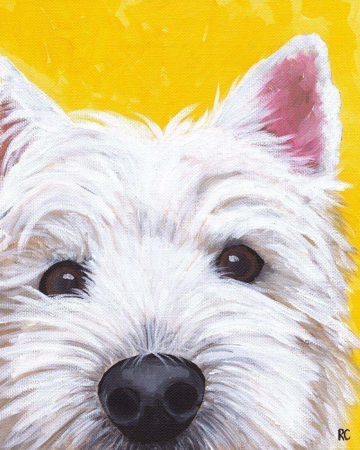 WEST HIGHLAND TERRIER #WESTIE #DOG #ART
