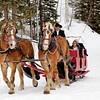 Winter Wedding via Horse-drawn sleigh ride
