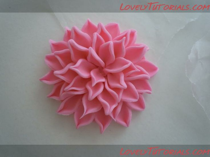 gumpaste flowers tutorial