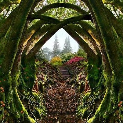Pin by Fleur Targett on Open the Doors to Narnia Windows