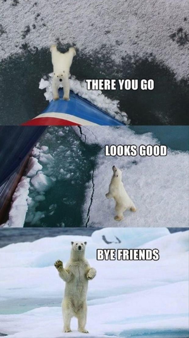 Bye friends   funny   ...
