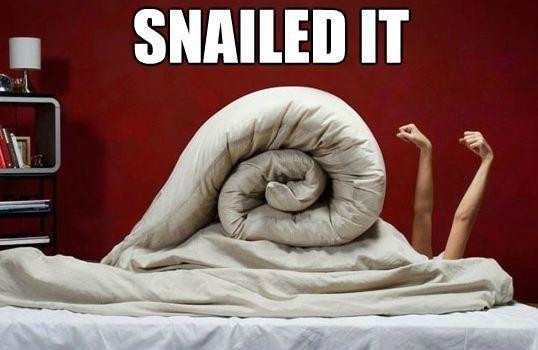snailed it!