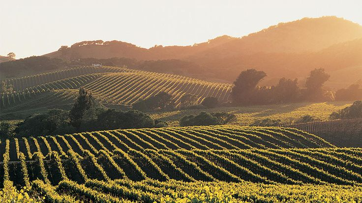 Napa Valley, California