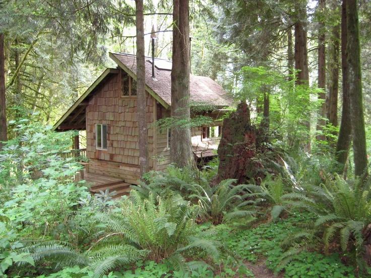 Handbuilt Cabin In Washington State Cozy Log Cabins
