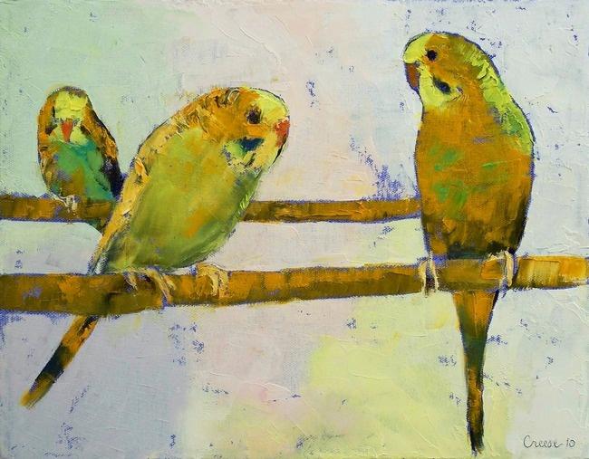 Three Parakeets   Michael Creese