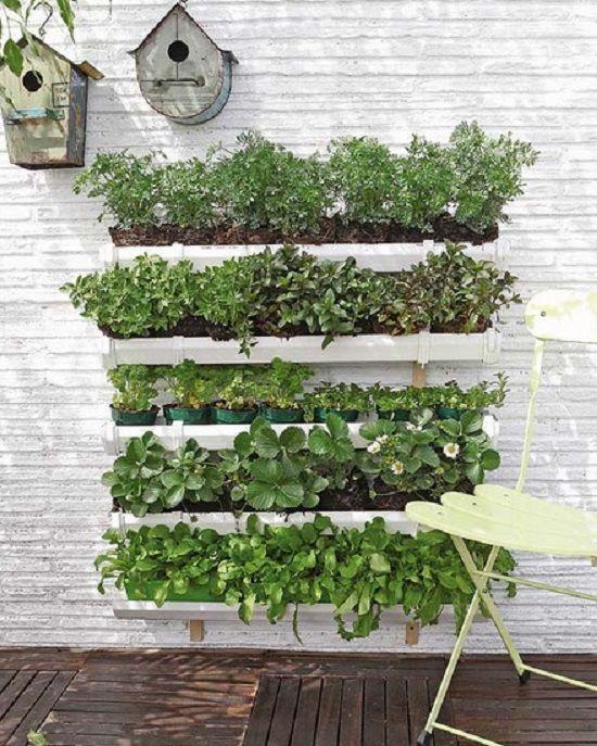 Vertical Garden Using Gutters Vege Garden Pinterest