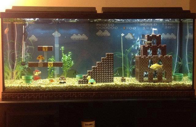 Mario style fish tank. AMAZING!