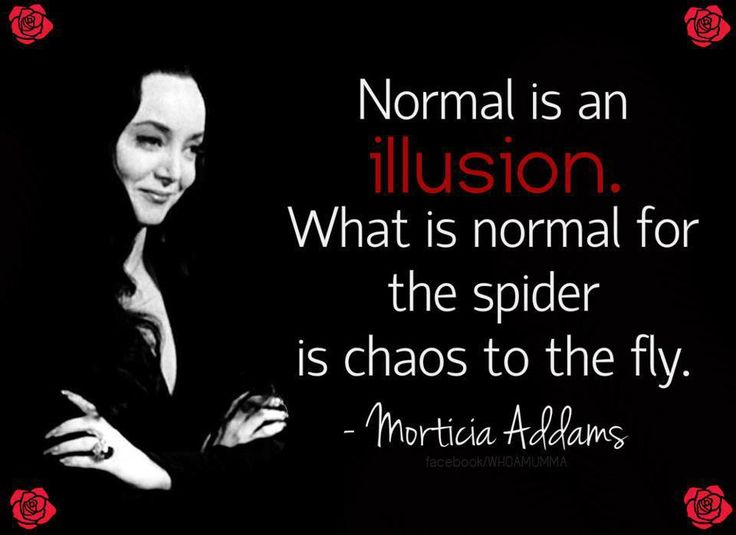Suggestions online images of morticia addams quotes normal is an normal is an illusion morticia addams quotes quotesgram altavistaventures Choice Image