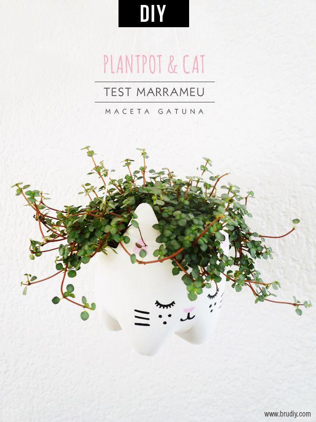 PlantPot and Cat - Bru DIY