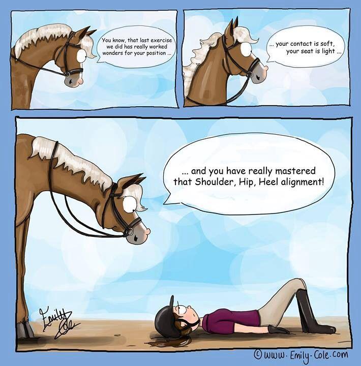 Horse cartoon jokes - photo#18